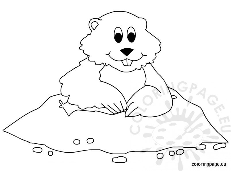 woodchuck coloring pages for kids - photo#25