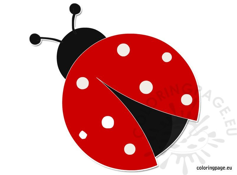 Red Ladybug Insect Coloring Page