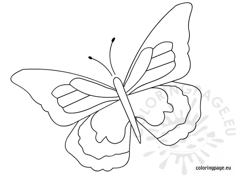 butterfly-coloring-page