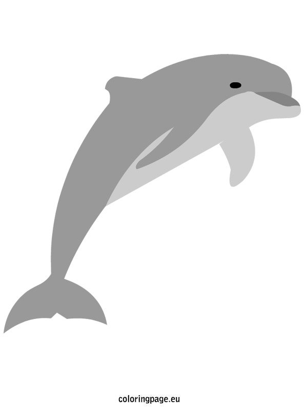Dolphins  Coloring Page