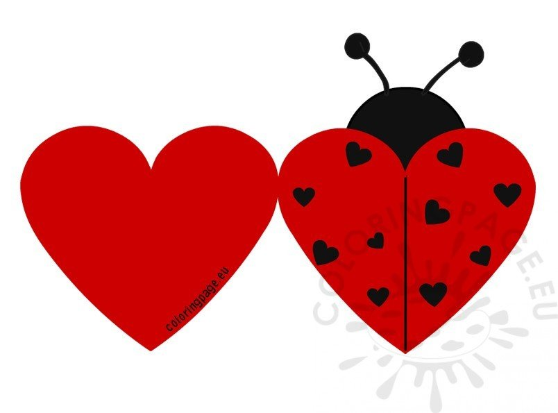 picture relating to Printable Ladybug known as Printable Ladybug Valentine playing cards Coloring Web site