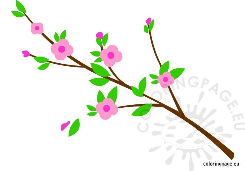 branch-with-flowers-2