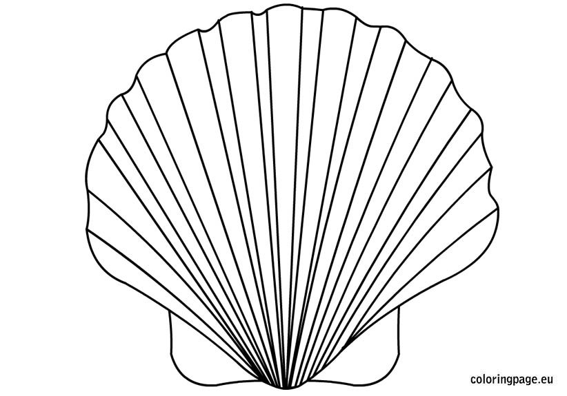 Shell coloring page for Shells coloring page