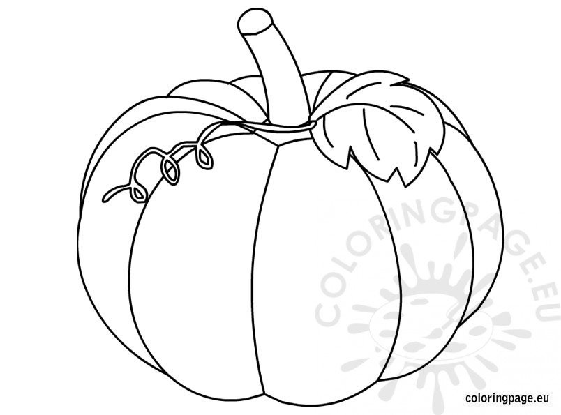 Pumpkin coloring picture