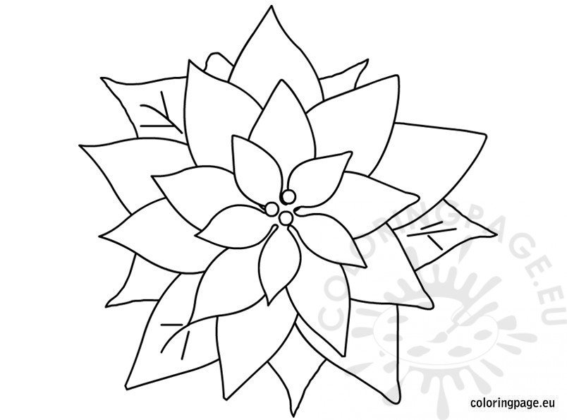 This is a photo of Invaluable christmas flowers coloring pages