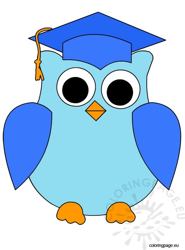 blue-owl-graduation