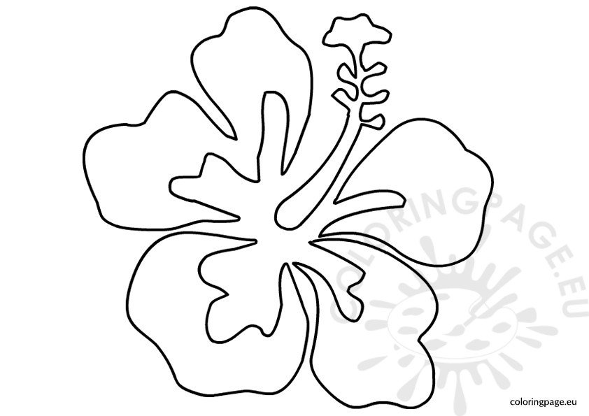Luau flower template Coloring Page