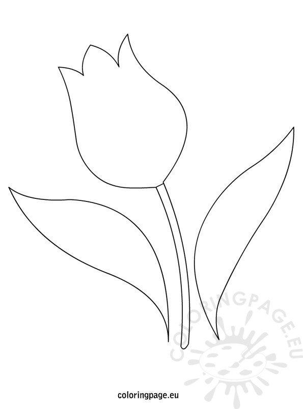 tulip template  u2013 coloring page