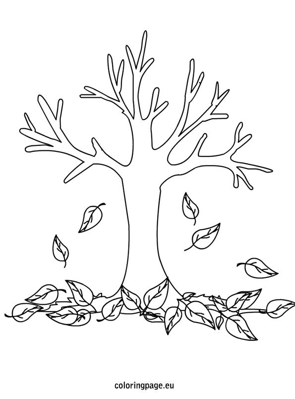 Autumn - Fall Tree - Coloring Page