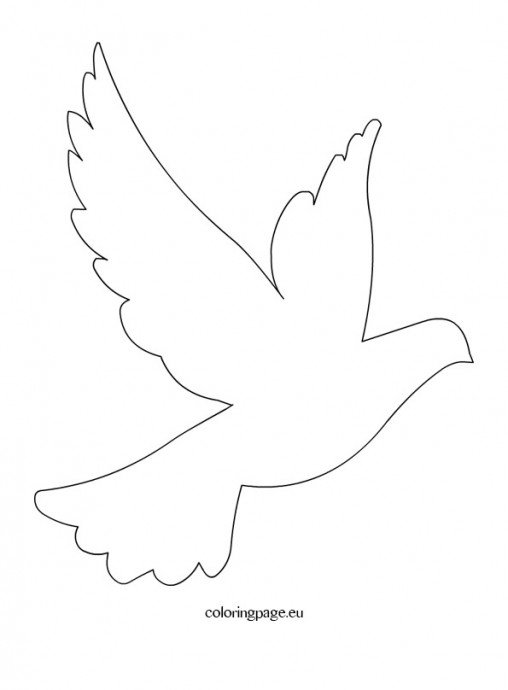 Intrepid image with regard to free printable dove template