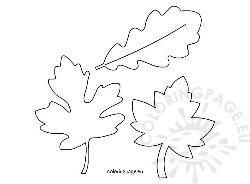 Autumn leaves fall leaves coloring page for Autumn leaf template free printables