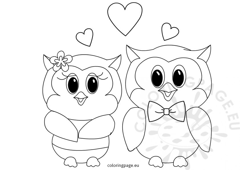Owls Love Valentines coloring page