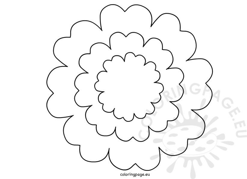 flower template 5 petals - coloring pages of flower petals coloring page