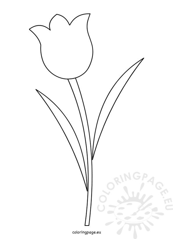Tulip Flower Template Printable  Coloring Page