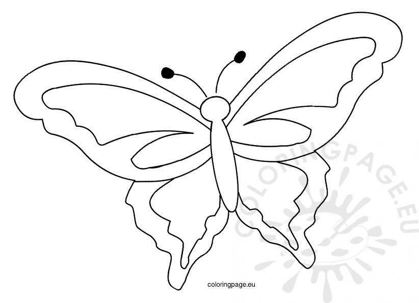 Printable Spring Butterfly Template  Coloring Page