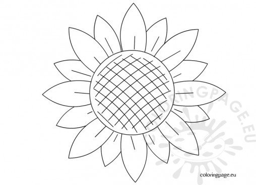 big sunflower coloring pages - photo#50