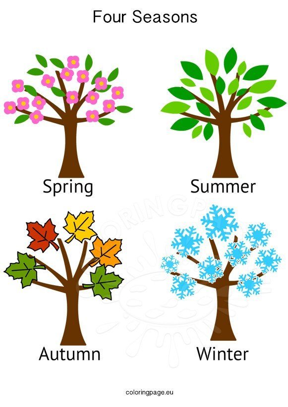 4 Seasons Colouring Sheets : Four seasons tree images coloring page