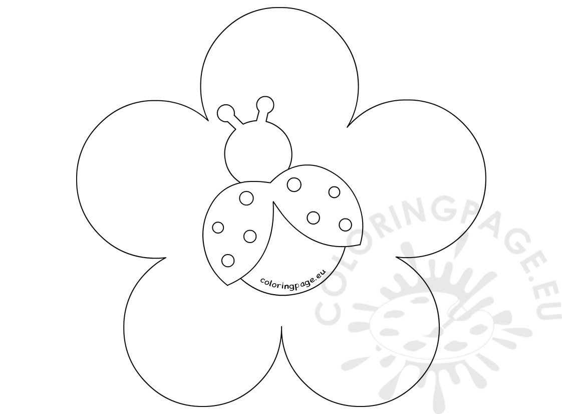 Ladybug On Flower Template Cake Ideas Coloring Page