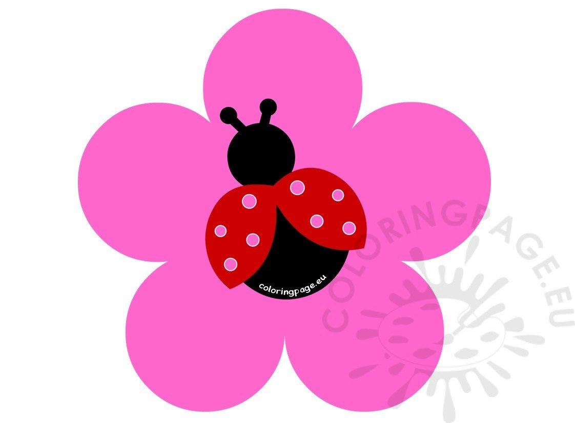 Vector Flower LadyBug Design