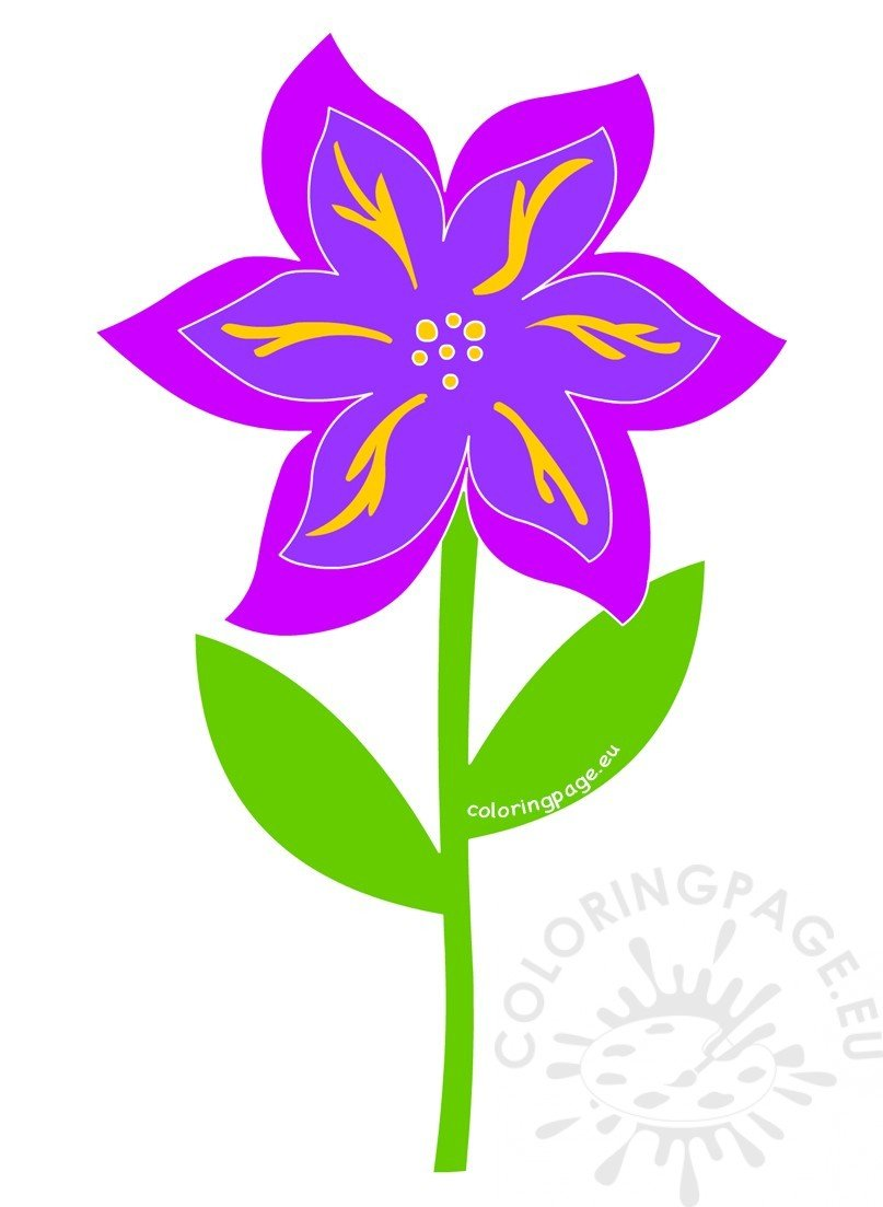 Purple flower with green stem and