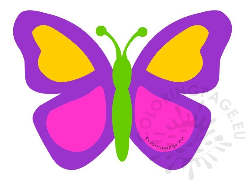 Simple purple butterfly llustration