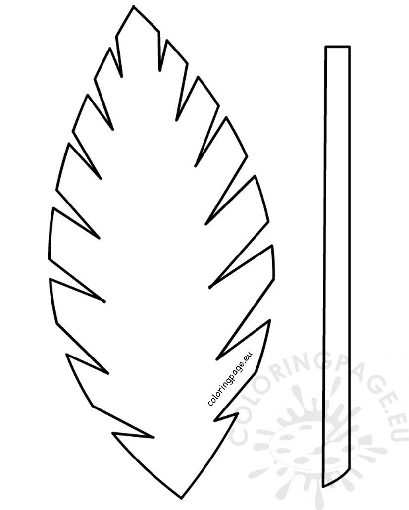 free palm leaves coloring pages - photo#18