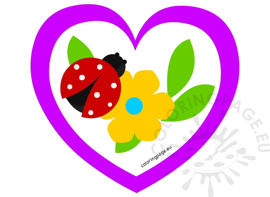 Heart frame Ladybug on beautiful flower