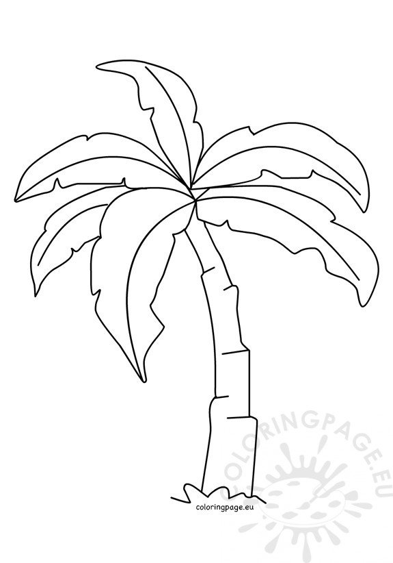 Tropical palm tree template | Coloring Page
