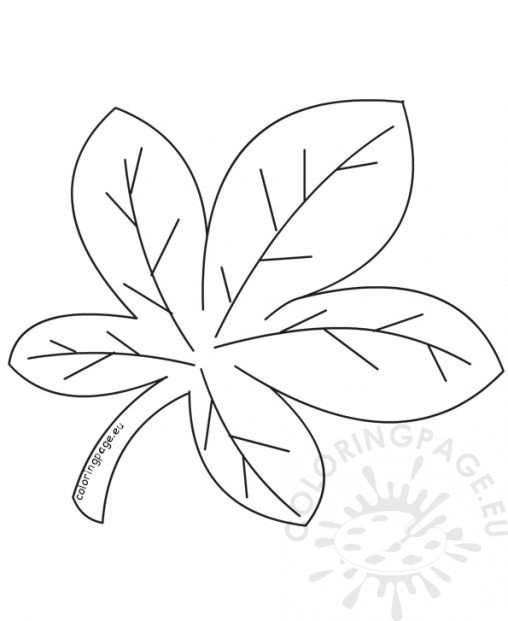 chestnut tree leaf coloring pages - photo#22