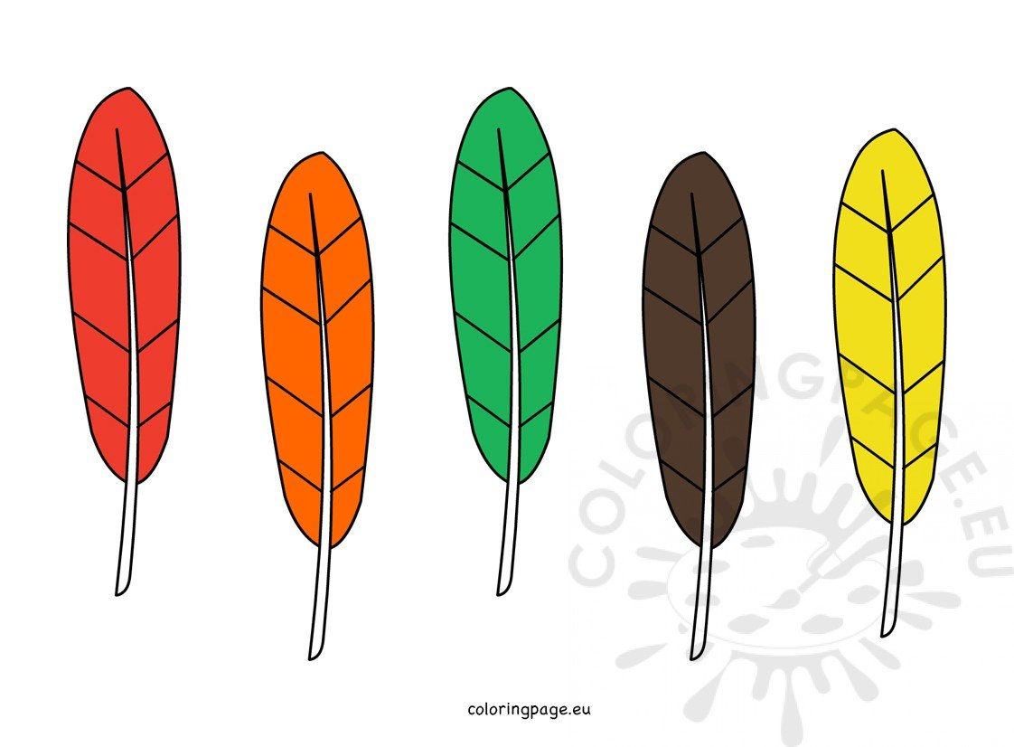 photograph about Turkey Feathers Printable named Coloration Turkey Feathers Coloring Web site