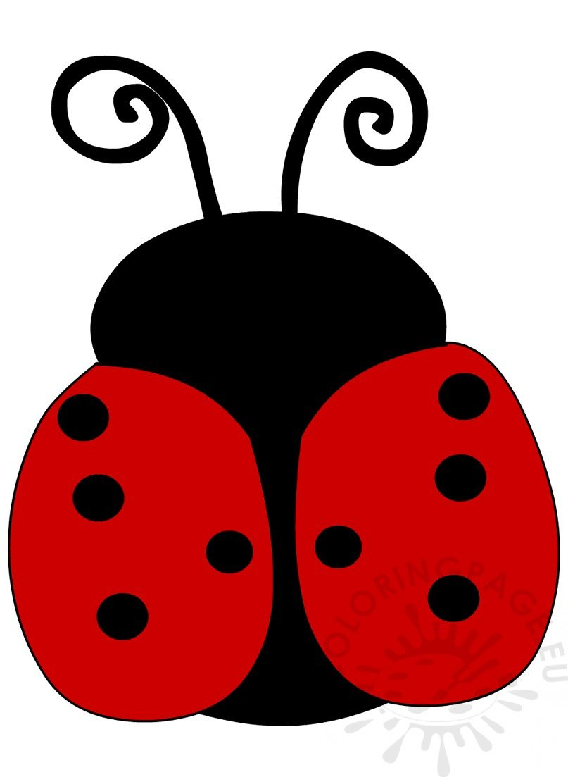 Ladybug Cartoon Insect Image Coloring Page