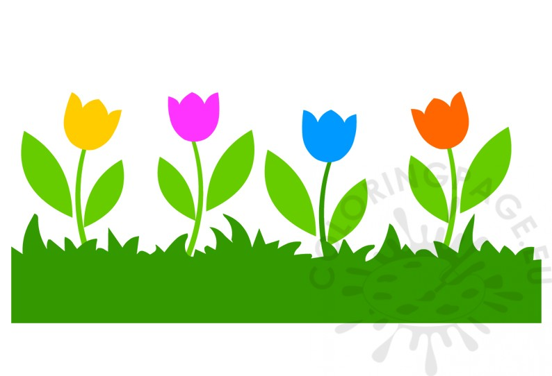 Grass with Colorful Tulips image
