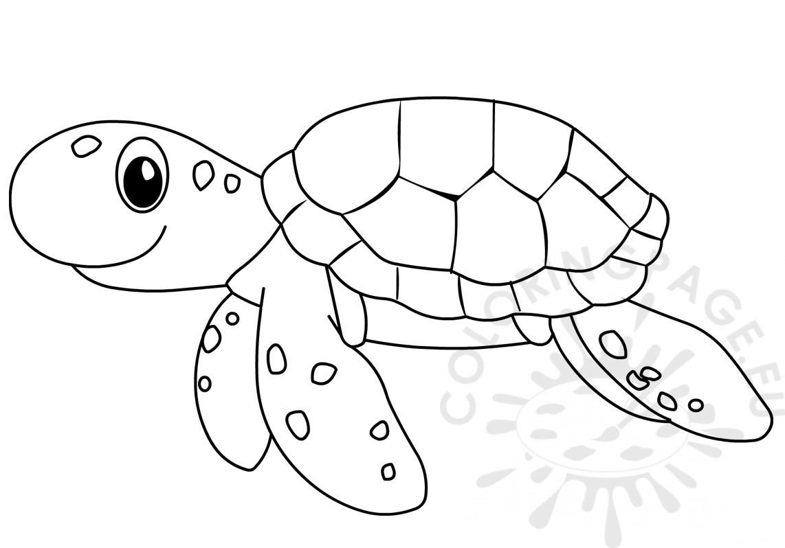 Ocean Animal Sea turtle cartoon