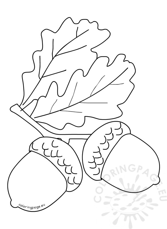 Autumn Coloring Page Acorns With Leaves Coloring Page