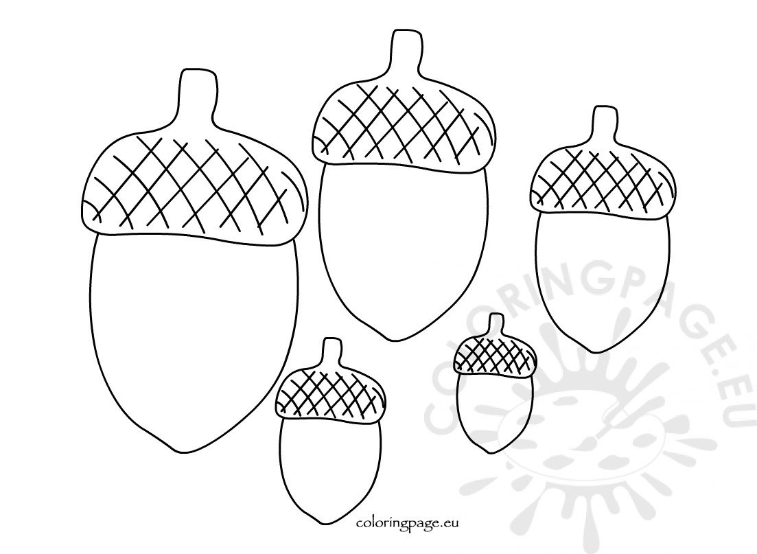 photo about Acorn Pattern Printable called Printable Acorn template alternative dimensions Coloring Website page