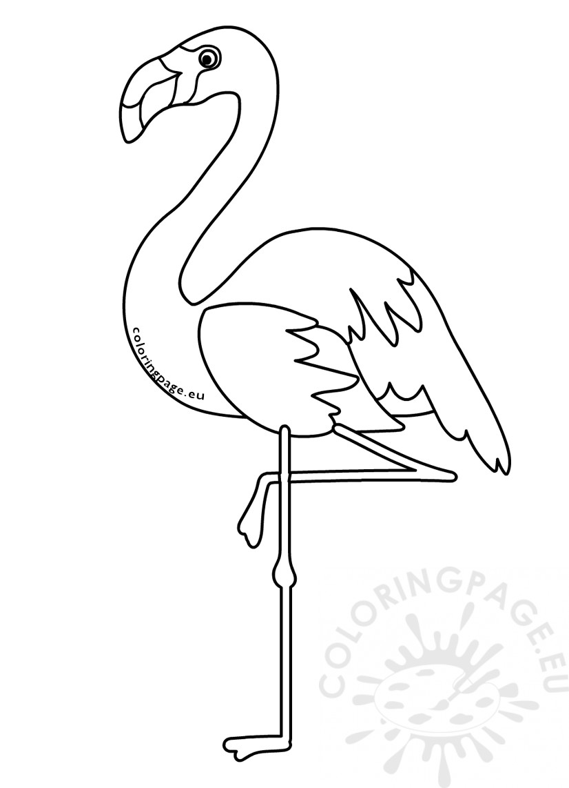 Animals Coloring Pages Cartoon Flamingo Bird Coloring Page