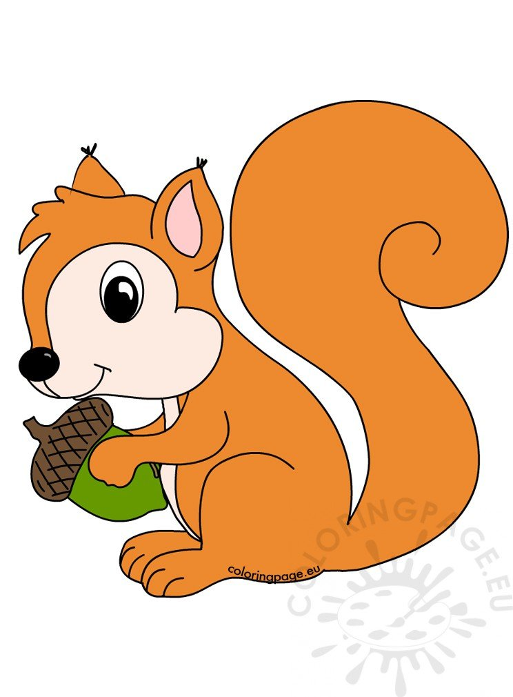 Forest animals Squirrel with acorn – Coloring Page