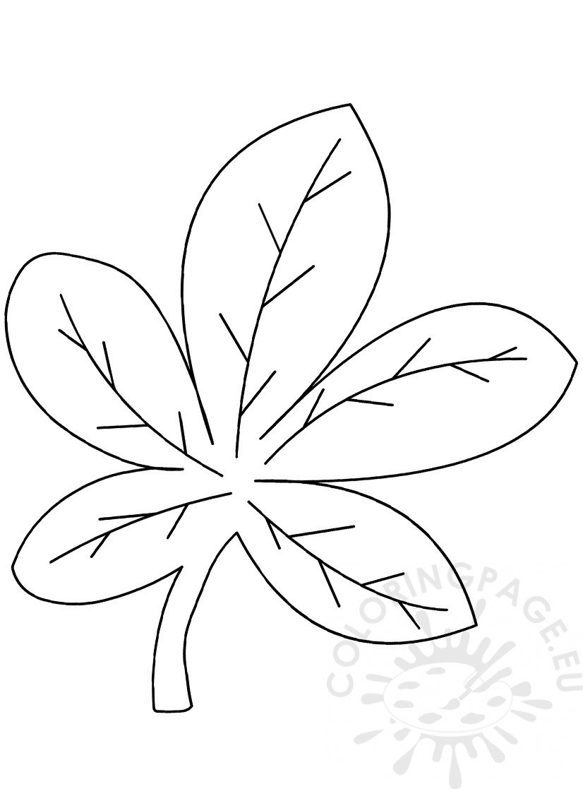chestnut tree leaf coloring pages - photo#19