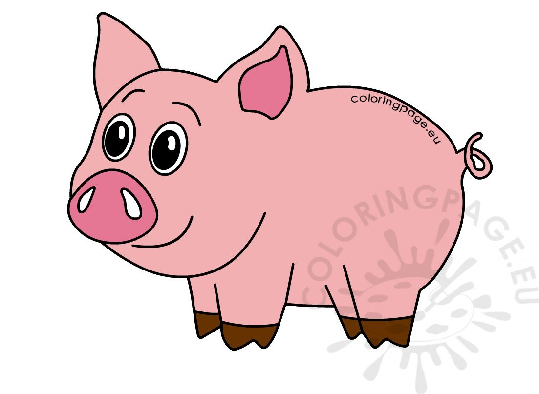 Pink cute little pig picture