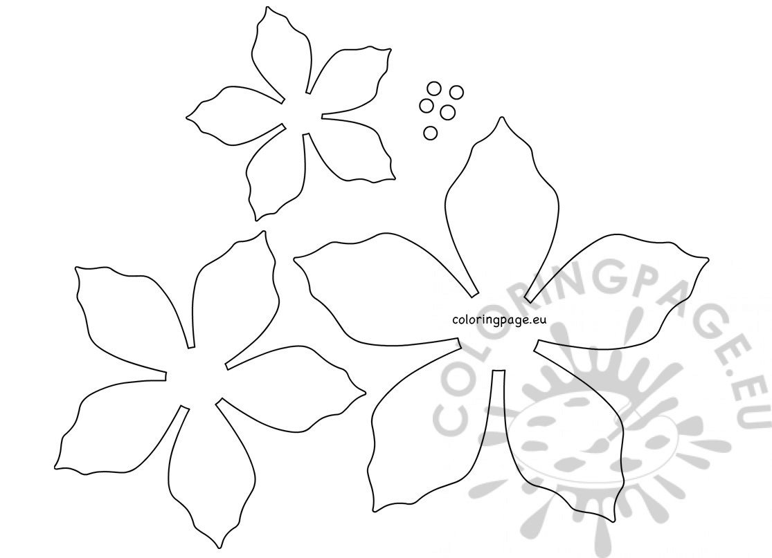 Lucrative image regarding printable poinsettia template