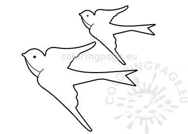 Swallows Birds template