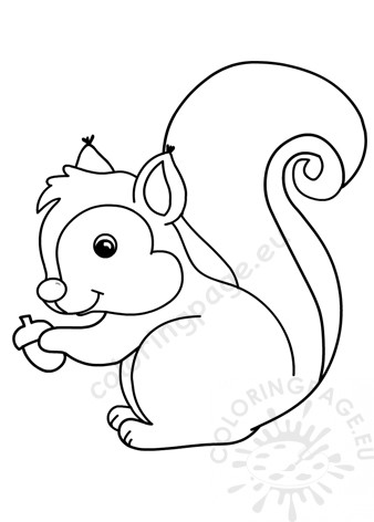 Squirrel outline holding acorn - Coloring Page