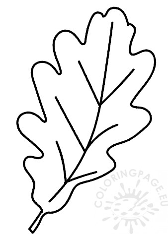 image about Acorn Template Printable titled Acorn leaf template Coloring Website page