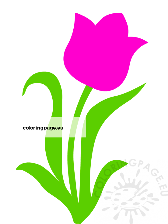 isolated pink tulip flower coloring page isolated pink tulip flower coloring page